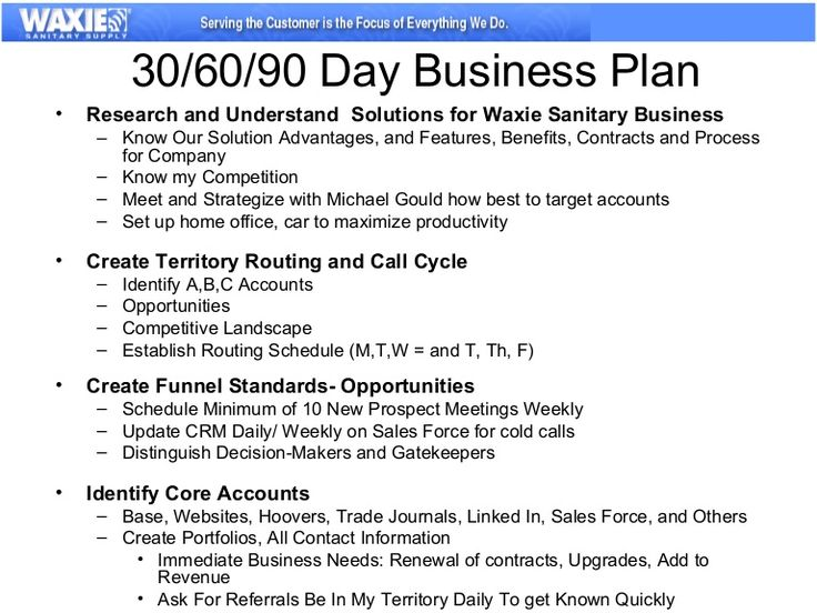 90 day business plan for sales custom assignment writing service